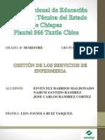 Manual de Organizacion Chiapas