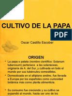 Presentacion Cultivo de La Papa