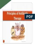 antibioticprinciples-130310213712-phpapp01