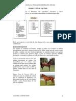 Produccion Equina pdf