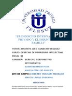 MONOGRAFIA DERECHO INTERNACIONAL PRIVADO Y EL DERECHO DE  FAMILIA.docx