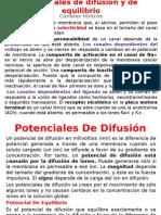 Potencial de Difusion