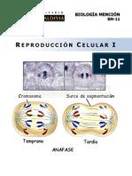 Reproduccion Celular 1