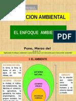 Enfoque Ambiental en El Sistema Educativo - Carabaya