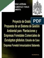 Propuesta Ambental Casos 2015-1 (1)