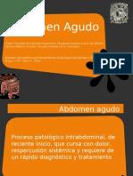 ABDOMENA GUDO