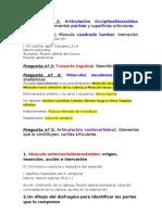 Modelo Exame 2n Parcial LOCOMOTOR