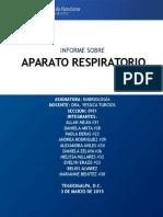 INFORME APARTO RESIRATORIO - EMBRIOLOGIA