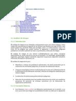 evaluacion de riesgos ambientales.docx