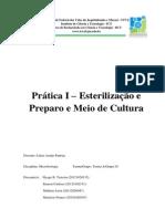 Relatório Esterelização e Preparo de Meio de Cultura