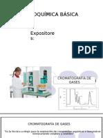Cormatografia de Gases y Liquido