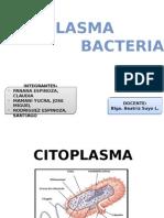 citoplasma bacteriano