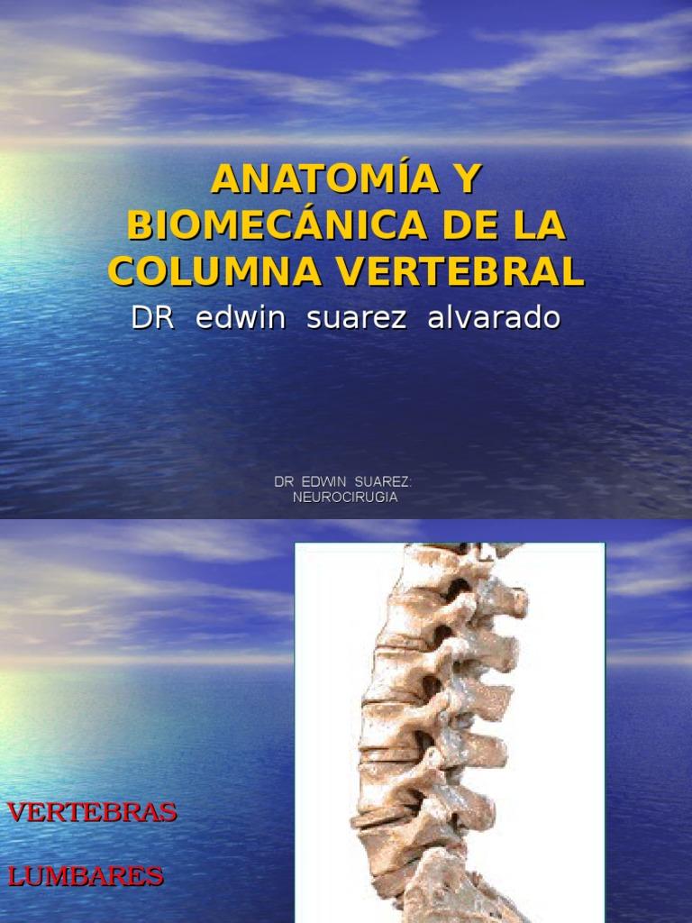 Anatomía y Biomecánica de La Columna Vertebral Unfsc Ultimo