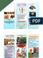 leaflet HT.doc