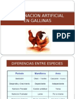 INS ARTIFICIAL DE GALLINAS.pptx