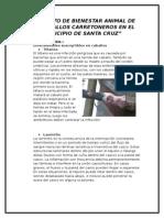 Proyecto de Bienestar Animal de Los Caballos Carretoneros en El Municipio de Santa Cruz