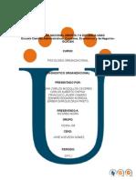 102054-204_Diagnsotico Organizacional.docx