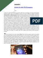 Hacking for Dummies.pdf