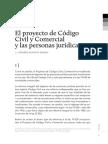 Nissen Personas Jurídicas Proyecto
