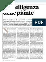 L'intelligenza delle piante