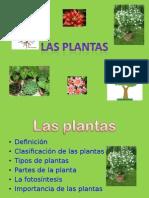 lasplantaspowerpoint-111126082331-phpapp01.ppt