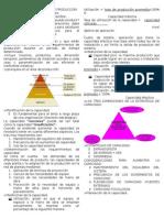 Resumen Unidad 3 GESTION DE LA PRODUCCION 1