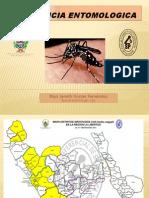 Vigilancia Aedes