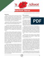 VasyliMedical Rearfoot Varus