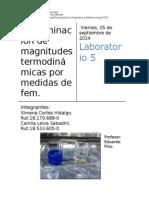 Determinación de Magnitudes Termodinámicas Por Medidas de Fem