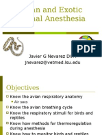 (2) Avian and Exotic Animal Anesthesia