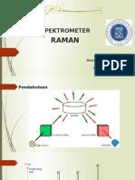 Spektrophotometer Raman