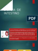 Biopsia de Intestino