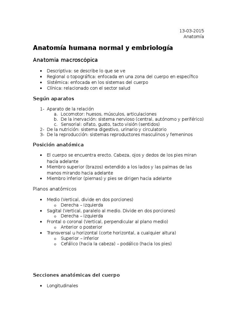 Anatomía (1)