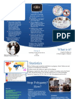 Polygamy Brochure