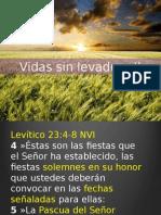 Panes Sin Levadura II