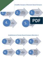 Establishment of Company Procedures_(1)