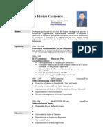 Currículo Luis Flores v3