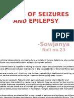 Causes of Seizures