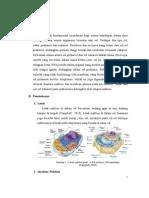 Nukleus Dan Nukleolus Paper Fix 1