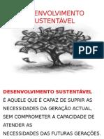 desenv sustentavel