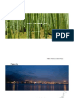 Presentasi Takayuki Shimizu_20130831.pdf