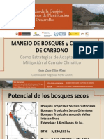 MANEJO DE BOSQUES Y CAPTURA DE CARBONO