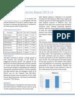 HCBL Directors Report 2013-2014.pdf