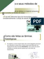 Histologia e SeuHistologia e Seus Metodos de Estudos Metodos de Estudo