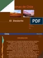 Biomas Desierto.ppt