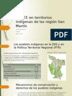 La ZEE en territorios indígenas de la región San Martín