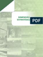 Dimensao_Estrategica
