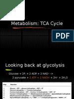 5-tca-cycle