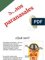 Senos paranasales compuesta tanairy y alejandra.pptx