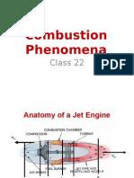 Combustion Phenomena